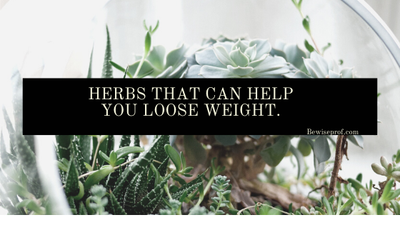 Photo of Herbs that can help you loose weight