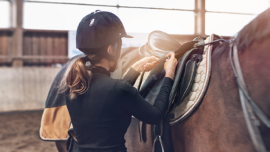 Photo of 7 Reasons Horseback Riding is Good for Your Health