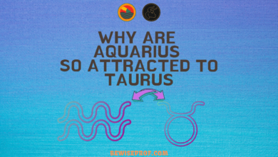 Photo of Why Are Aquarius So Attracted To Taurus